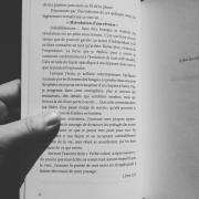 Révolution d'une rêveuse Isabelle Nell écrivain